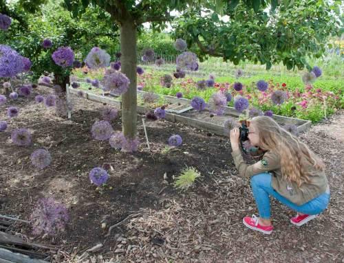 Aalsmeer Flower Festival: nieuwste trends bloemdesign