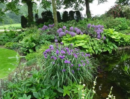 In Flevoland tuinen kijken met Pinksteren