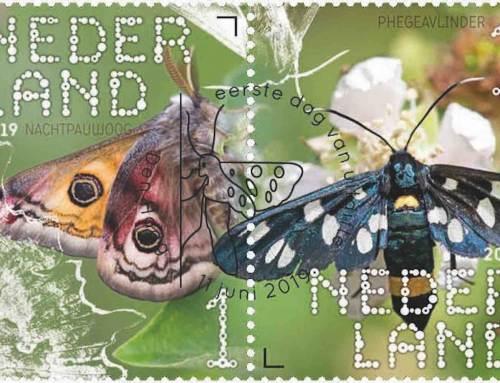 Vlinders in de rechterbovenhoek
