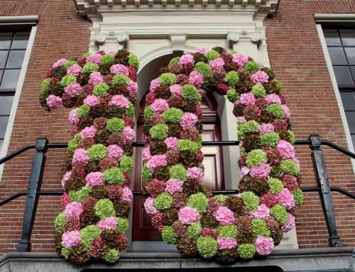Hortensia's voor 10 jaar Hermitage aan de Amstel