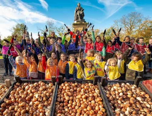 Schoolkinderen planten 1 miljoen bollen