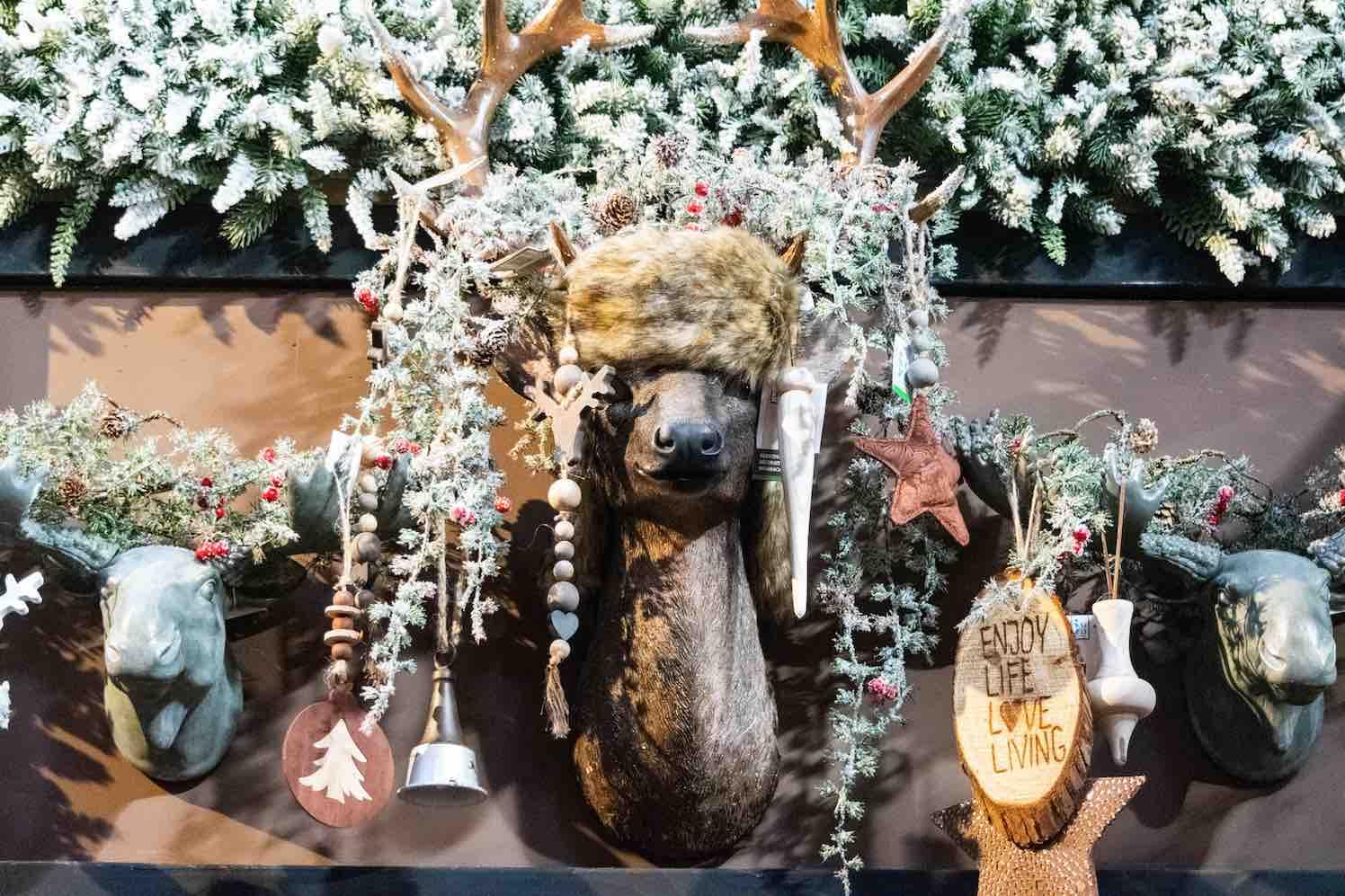 De Beste Kerstshows 2019 van Nederland zijn bekend