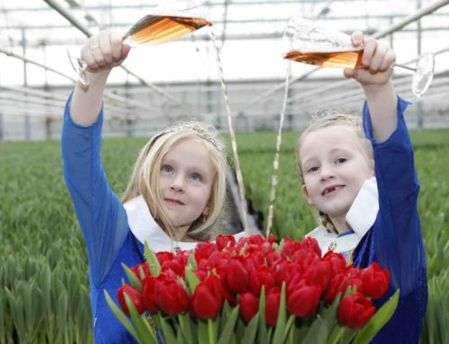 Prinsesjes dopen de Tulipa Make-A-Wish