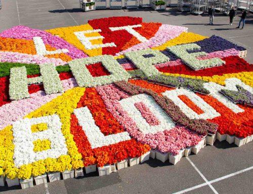 Bloemenboodschap in tijden van corona