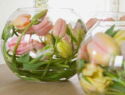 Pasen met tulpen, takken en jonge eendjes