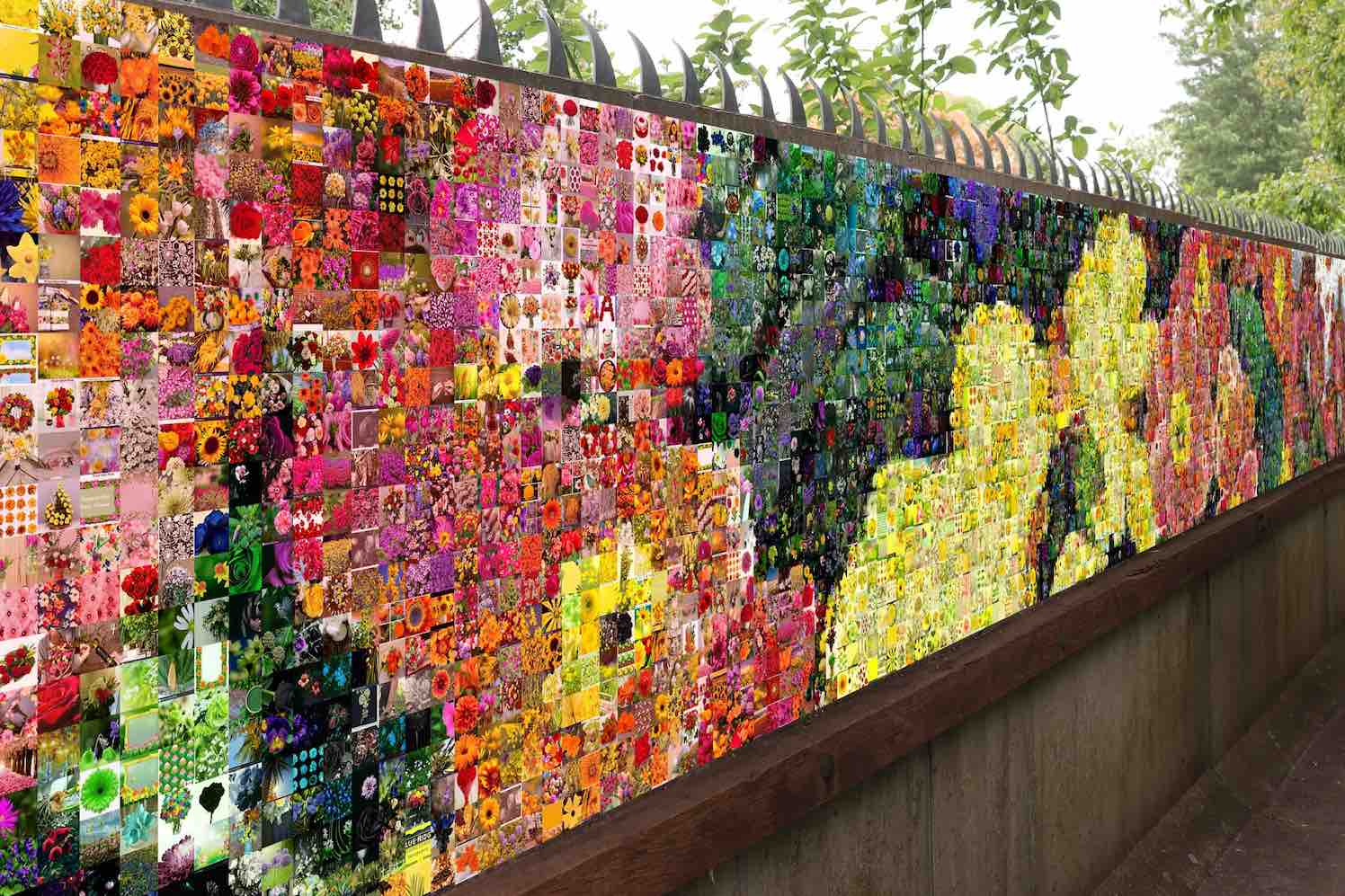 wall of flowers, kort nieuws (2)
