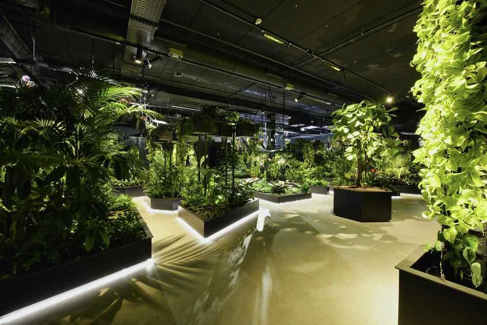 Bloemenenplantenattractie