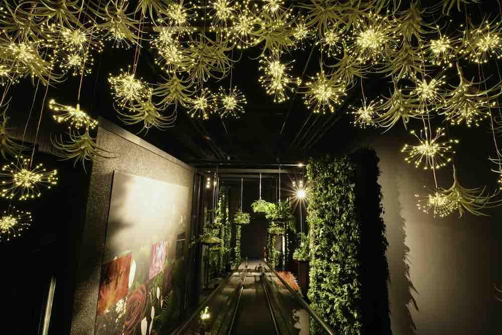 Bloemen en planten attractie