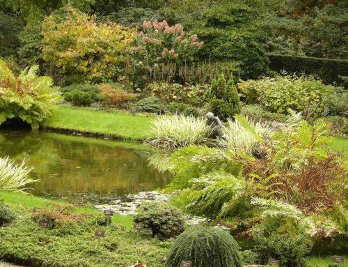 Trompenburg, tuinen & arboretum