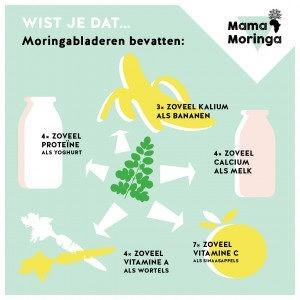 moringa oliefera