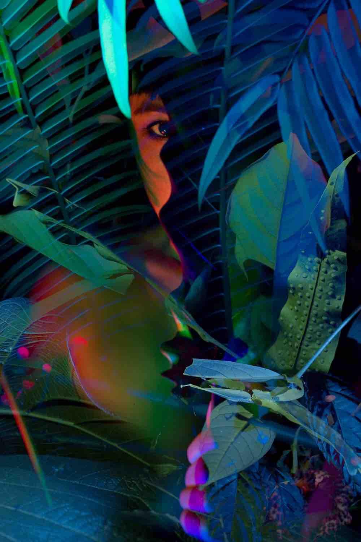 verborgen nachtleven flora