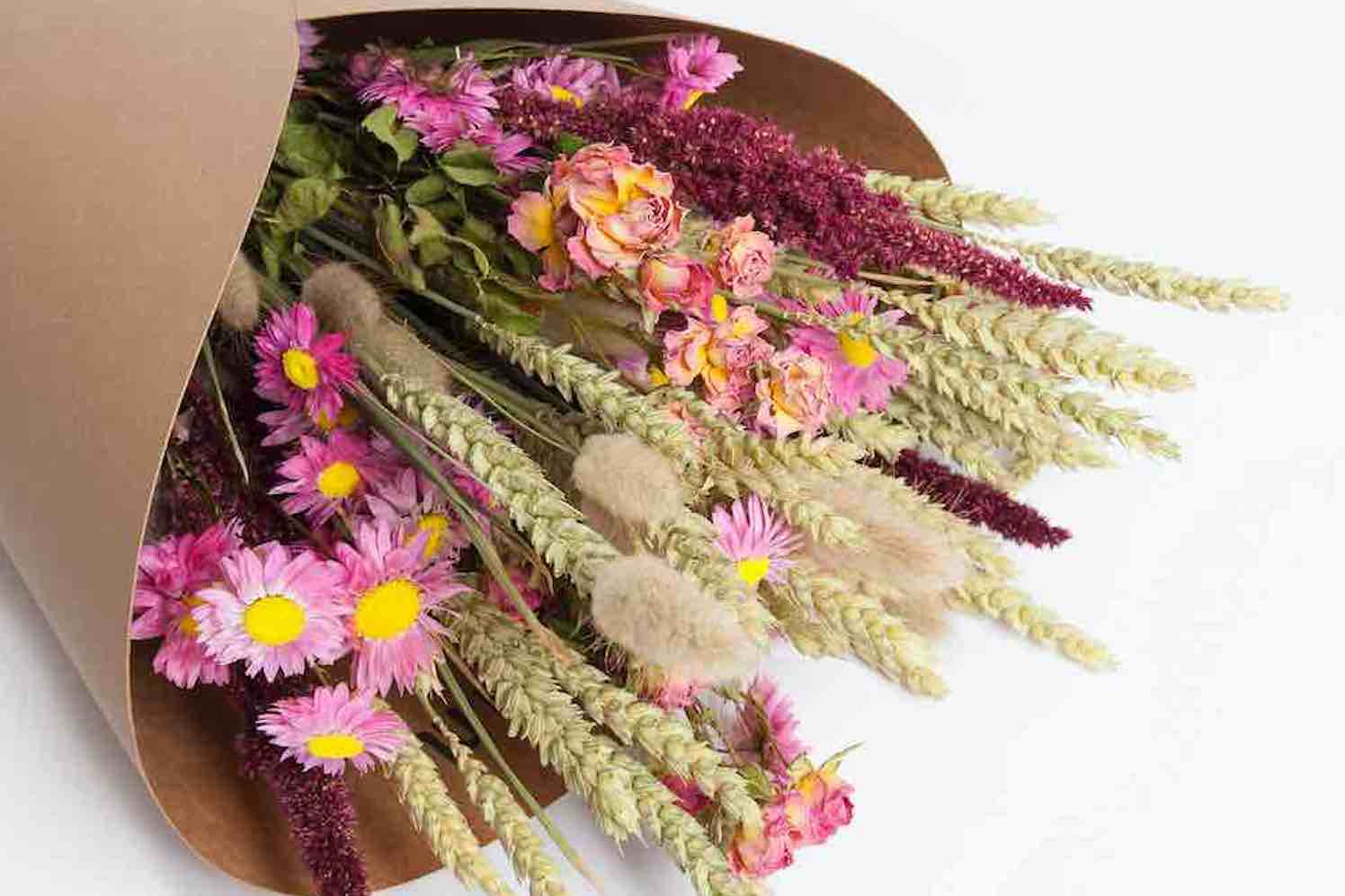 duurzame droogbloemen