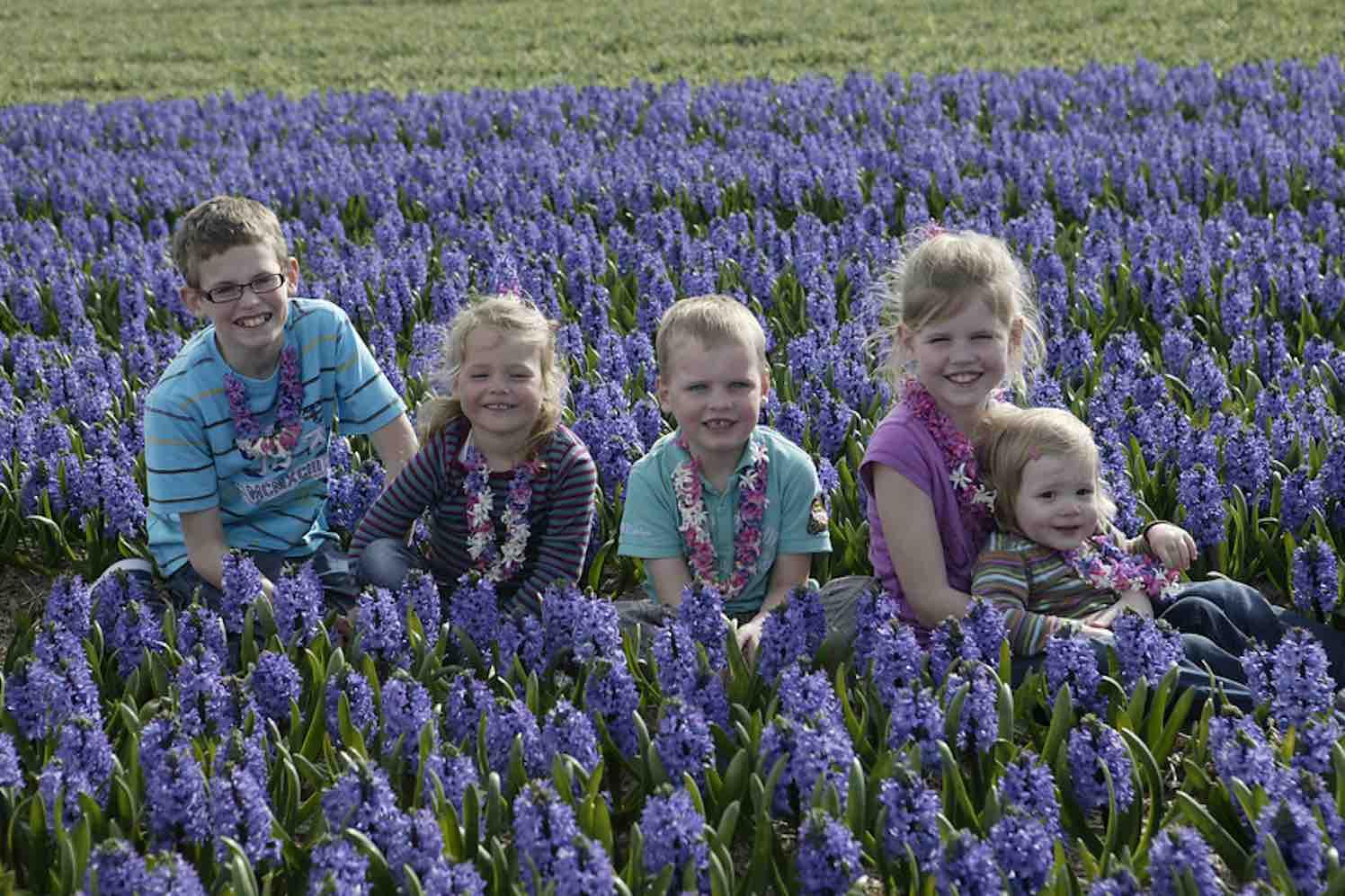 kinderparadijs met hyacinten