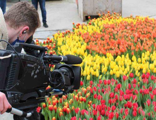 Tulpenpromotie met als thema Let's Connect