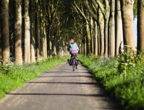 Versleten fietsaccu? Kies je voor nieuw of voor revisie