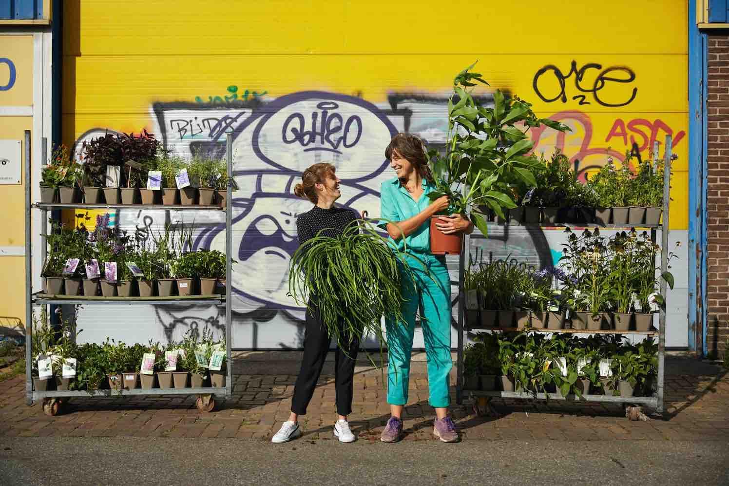 biologische planten