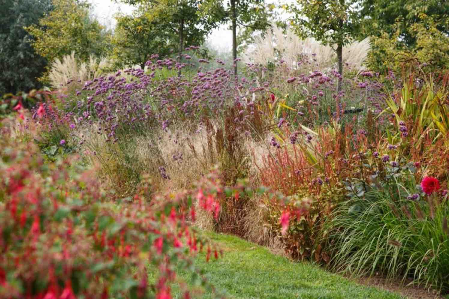 Herfstkleuren schitteren in Tuinen van Appeltern