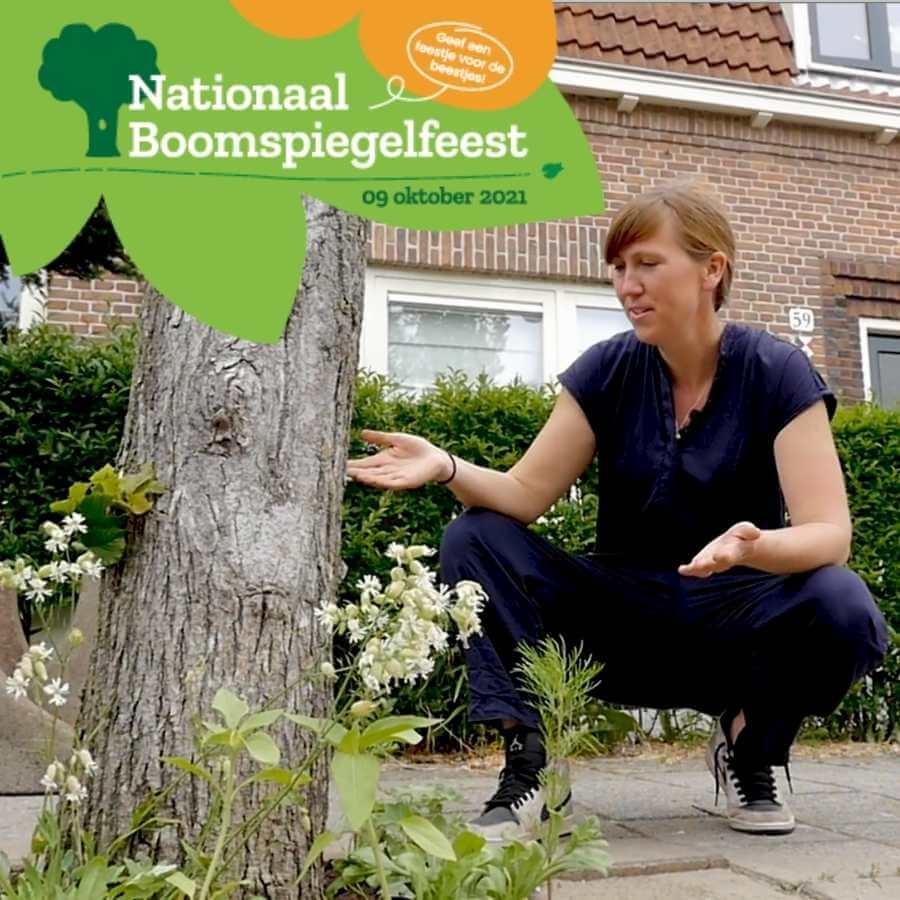 nationale boomspiegelfeest